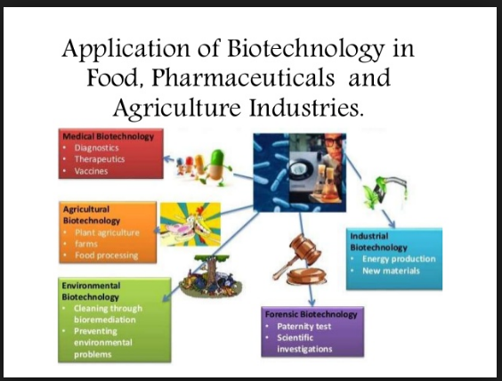 Science Agriculture Biotechnology Biotechnology In Industries